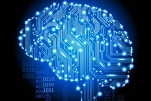 human_brain-100034051-gallery