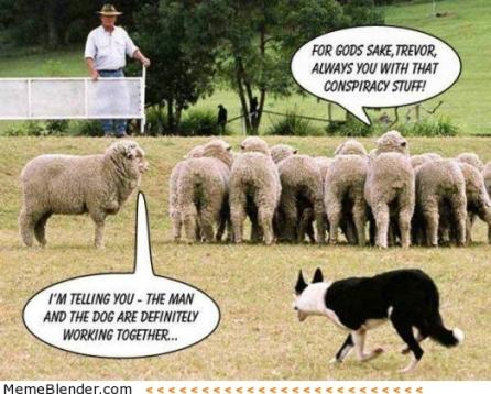Image result for sheeple