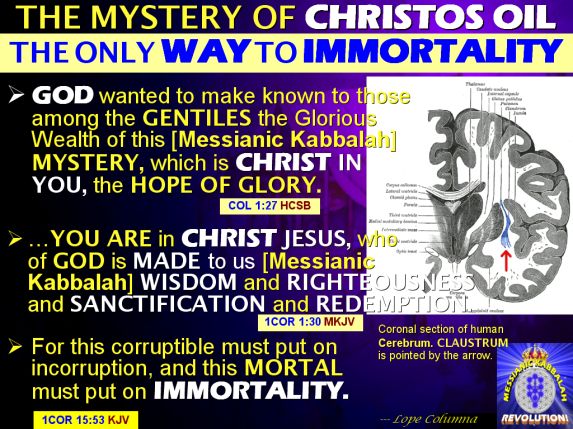 MYSTERY OF CHRISTOS OIL